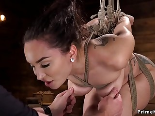 Tied up gimp cunt and ball-sac vibrated