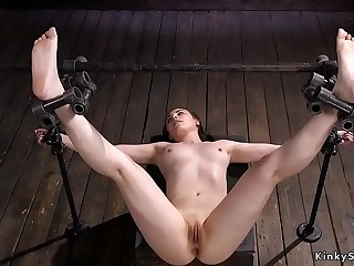 Brunette in eagle spread bondage punched