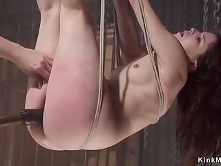 Hogtied suspended brunette pussy toyed