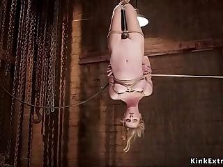 Blonde tormented in hogtie suspension
