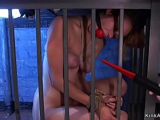 Slim brunette sub zaapered in cage